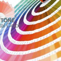 Pantone Color System, USA